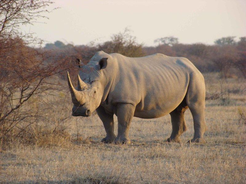Ботсвана 7-дневный маршрут
