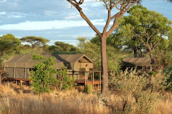 Tlouwana camp Ботсвана тур на 4 дня
