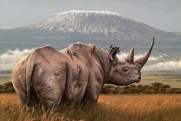 Амбосели национальный парк в Кении, сафари