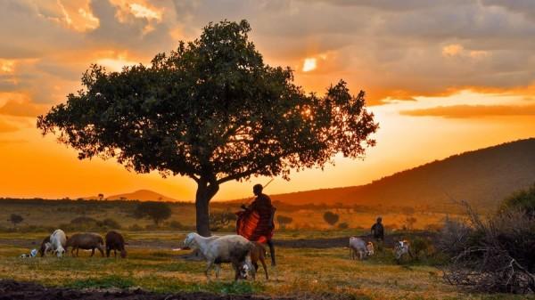 Кения тур на двоих