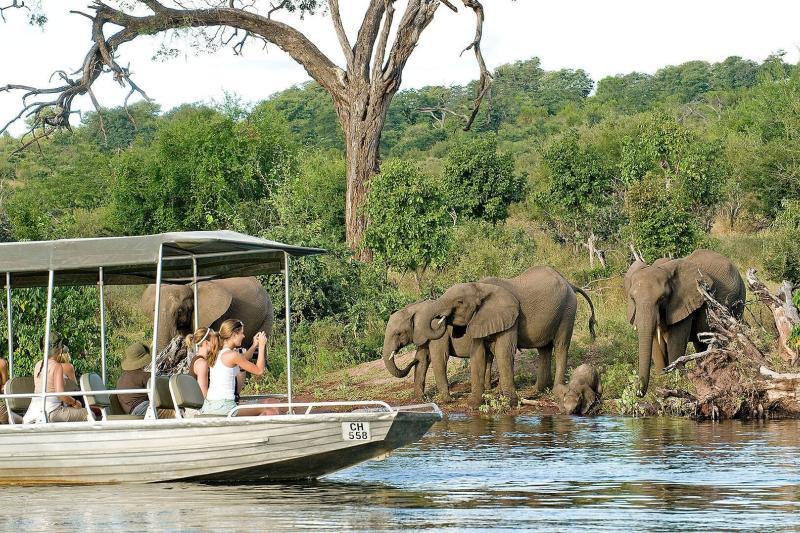 Национальный парк Чобе, река Чобе, Ботсвана, Африка