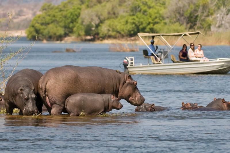 Река Замбези, Замбия, Ботсвана