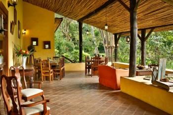 Танзания сафари River Trees Country Inn.