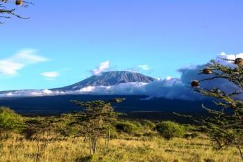 Килиманджаро маршрут Марангу