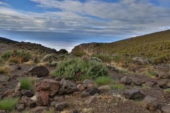 Килиманджаро маршрут Мачаме